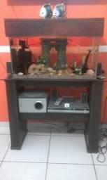 Lindo aquário R$800