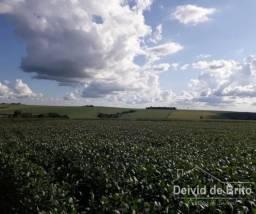 Área Rural - Ouro Verde do Oeste 5 Alqueires