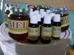Direto p o seu lar o mais puro mel silvestres distriuidora direto do apiário