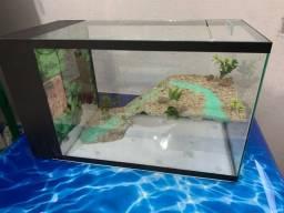 Aquaterrario com sump de filtragem lateral, novo e decorado