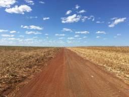 Fazenda na bacia do araguaia no tocantins