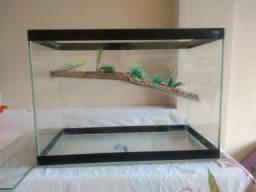 Aquaterrario n4