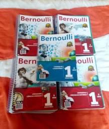 Kit Bernoulli 1° Ano em bom estado