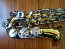Sax alto hoyden (muito conservado e com todos acessórios)