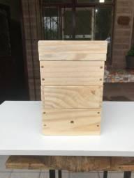 Caixa modelo INPA abelhas sem ferrão - ASF