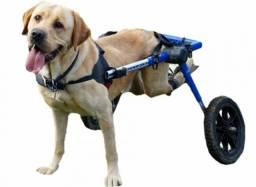 """""""Procuro"""" quem faça dessa cadeirinha de rodas para labrador"""