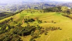Terreno Rural de 48 alqueires para plantio de Oliveiras no Sul de MG - 1.400m altitude