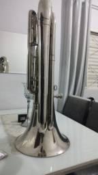 Tuba weril