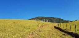 Título do anúncio: Fazenda à venda, 263,6 hectares por R$ 7.500.000 - Alegre de Cima - Brasópolis/MG