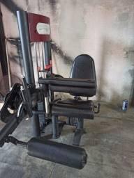 Cadeira flexora Righetto
