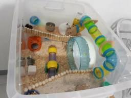 Diversos itens de Hamster gerbils topolinos camundongos ratos Twisters