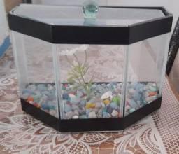 Aquários Pequenos para Peixes