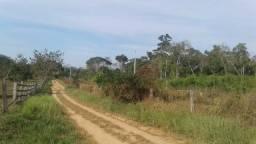 Venda-se 5 hectares de terra