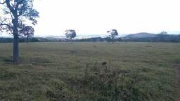 Fazenda 60 Alqueires   região Anicuns  