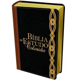 Bíblia de Estudo Colorida - NVI - Letra Grande - Vinho