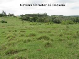 Terreno 20.000 m2 Poço artesiano, lúz, excelente localização Ref. 133 Silva Corretor