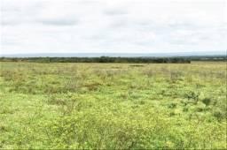 Fazenda de 600 Tarefas