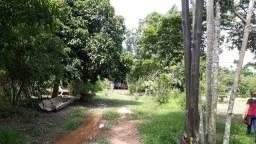 Título do anúncio: Excelente chácara 2,5 alqueires á 46 km de Porto Velho