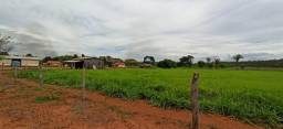 Fazenda com 1.250 há (260 alq) dupla aptidão para o agronegócio