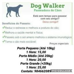 Dog Walker (Passeadora de Cães)