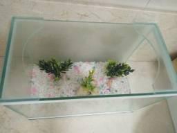 Aquario Pequeno