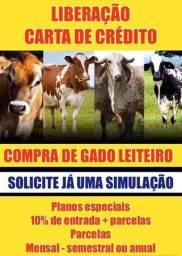 Credito para investimento rural