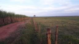 Fazenda - Propriedade com aproximadamente 75 alq