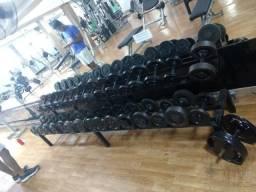 Dumbells 6kg a 20kg + suporte