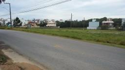T098-Terreno Palmas do Arvoredo