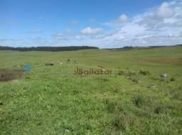 Vendo este excelente e magnífico campo, um verdadeiro paraíso, com a área de 150 hectares