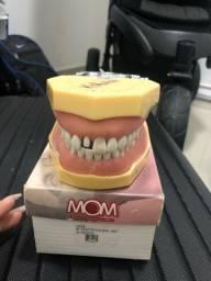 Manequim para materiais Dentario( Dentistica)