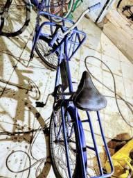 Bike cargueiro