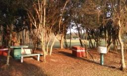 Título do anúncio: Camping Recanto das Dunas - Itapeva/Torres