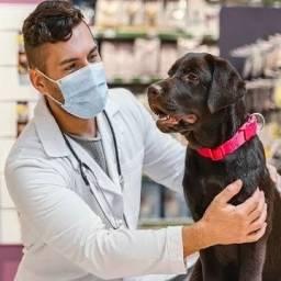 Título do anúncio: Procuro veterinário formado para abrir consultório