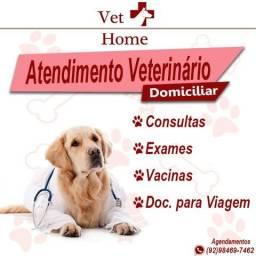 Atendimento Veterinário em Casa e Pet Hotel!