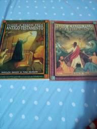 Livros de estudo passo a passo da biblia sagrada