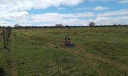Fazenda à venda por R$ 42.750.000 - Zona Rural - Pedro Gomes/MS