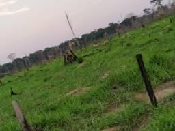VENDE -SE Terra na Samuel candeias do jamari