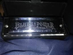 Gaita Blues Power SWAN