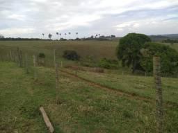 75D/Ótima fazenda de 60 ha em Araxá, para agricultura/café/pecuária