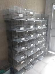 Gaiolas de exposição para aves