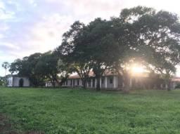 Espetacular fazenda nas divisas dos Estados do Piaui e Maranhão
