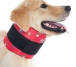 Colar cervical canino