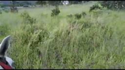 Chácara saída para Aragoiânia 5.630 metros próximo três represas de campos dourados