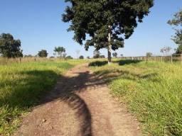 Fazenda para pecuaria a 51 km de Cuiabá