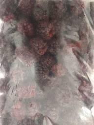 Amora Graúda Congelada pacote 1 kg