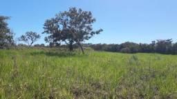 Fazenda boa para pecuária entre Rosário Oeste e Cuiabá