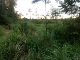 Fazenda de 128 Alqueires com 80 de capim! pegar imóveis em  Parauapebas