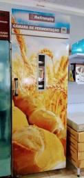 Câmara de fermentação 20 esteiras - * Irani