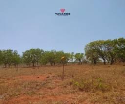 Fazendinhas 20.000 m² planas, com riacho e terra boa de cultural!